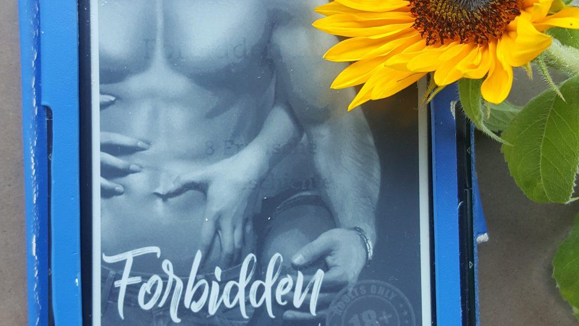 Rezension zu Forbidden Bonds. 8 erotische Kurzgeschichten