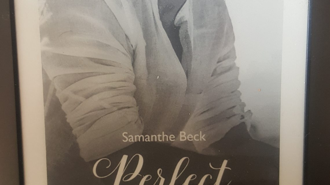Rezension zu Perfect Stranger (Compromise me 3)