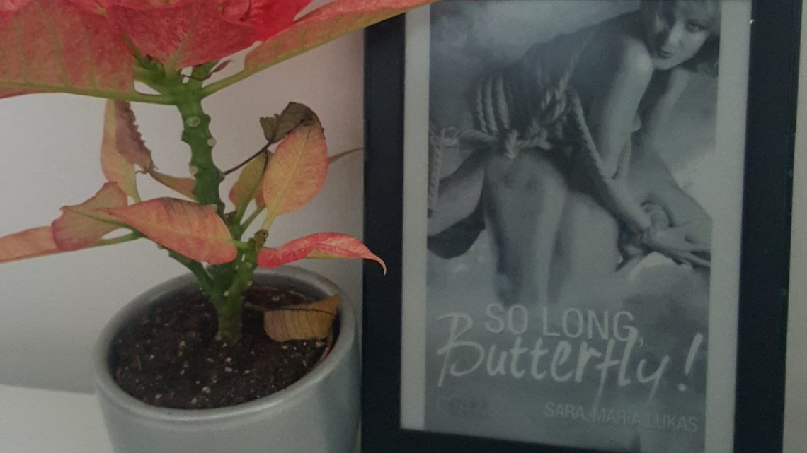 Rezension zu So long, Butterfly! (Hard & Love 4)