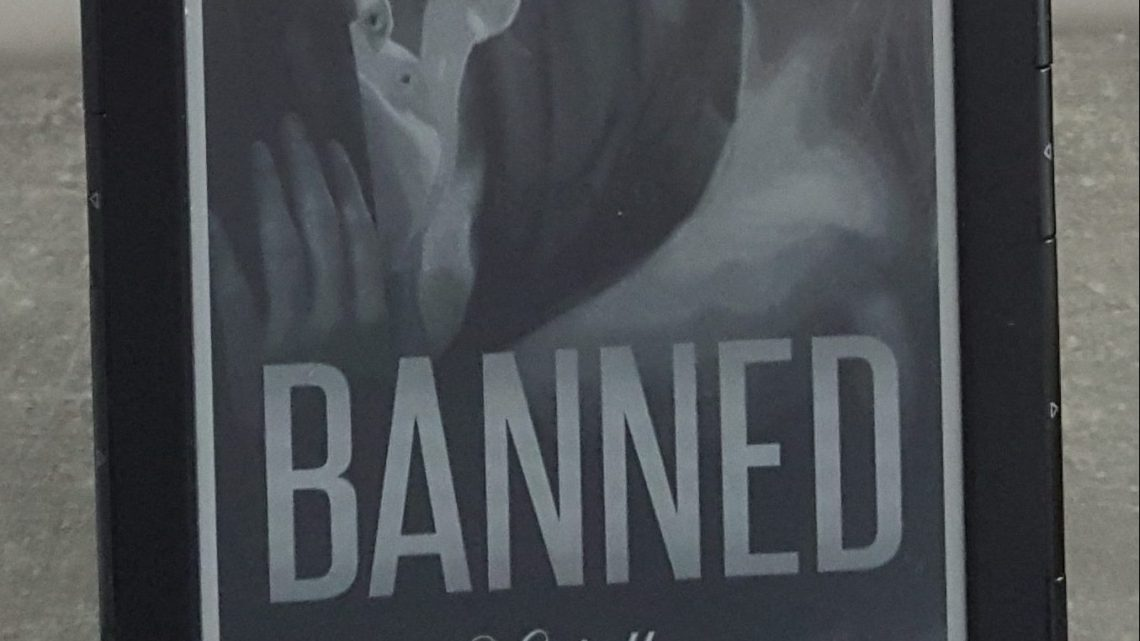 Rezension zu Banned. Verfallen (Dirty Love 3)