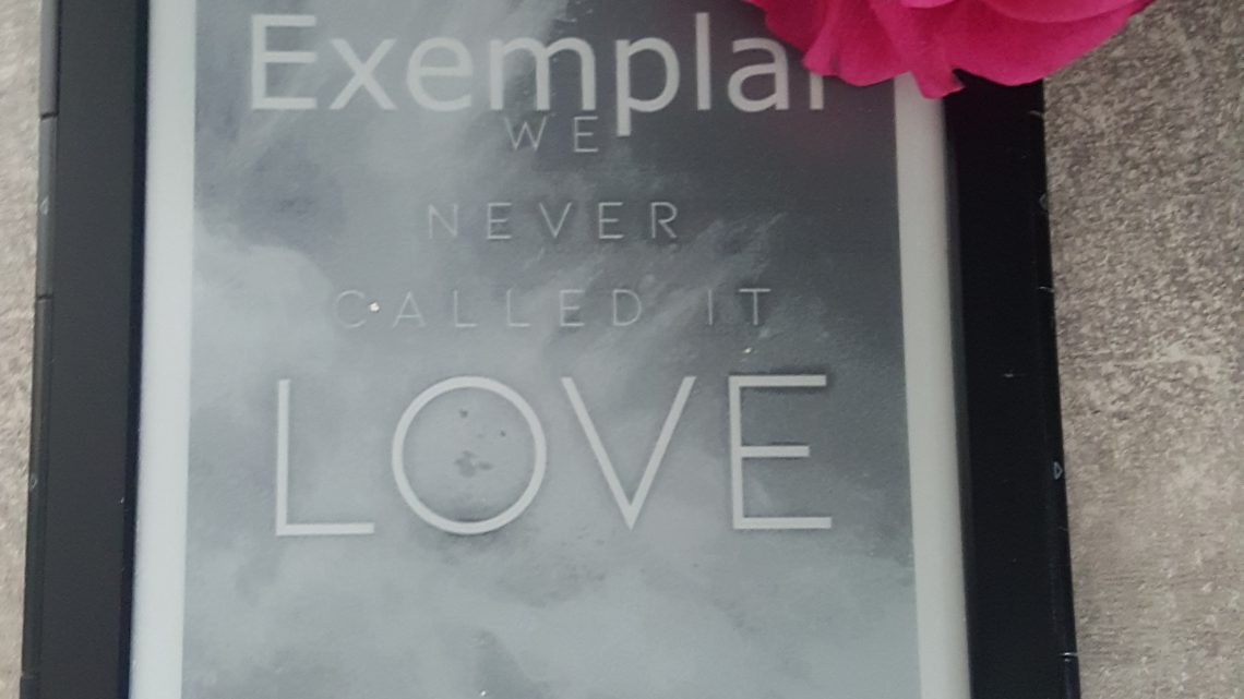 Rezension zu We Never Called It Love