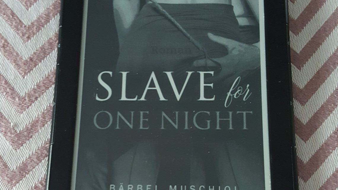 Rezension zu Slave for One Night