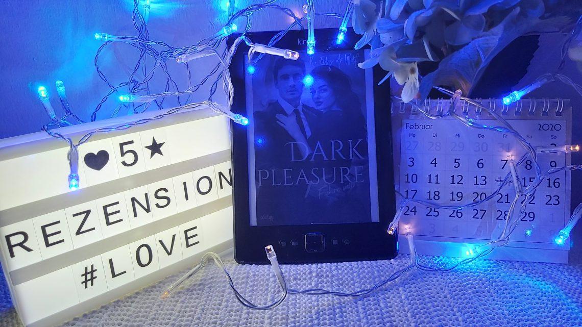 Rezension zu Dark Pleasure: Führe Mich (Dark Passion Reihe 4)