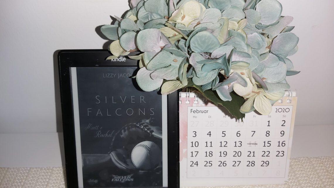 Rezension zu Silver Falcons: Matt & Rachel (Silver-Falcons-Reihe 1)