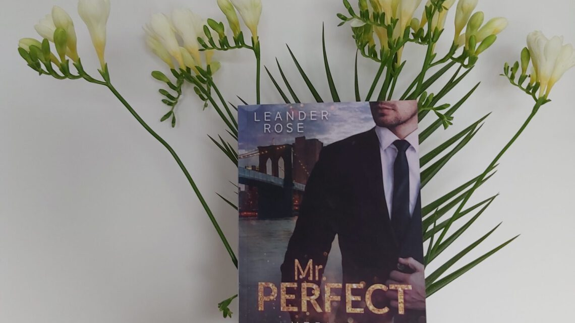 Rezension zu Mr. Perfect: Verliebt in Manhattan: Liebesroman